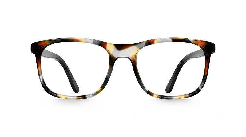 Bild gloryfy - Optics Collection - GX FirstChoice tropical havanna_EUR 279_front.jpg